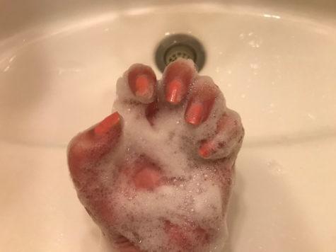 シャンプー 猫の手